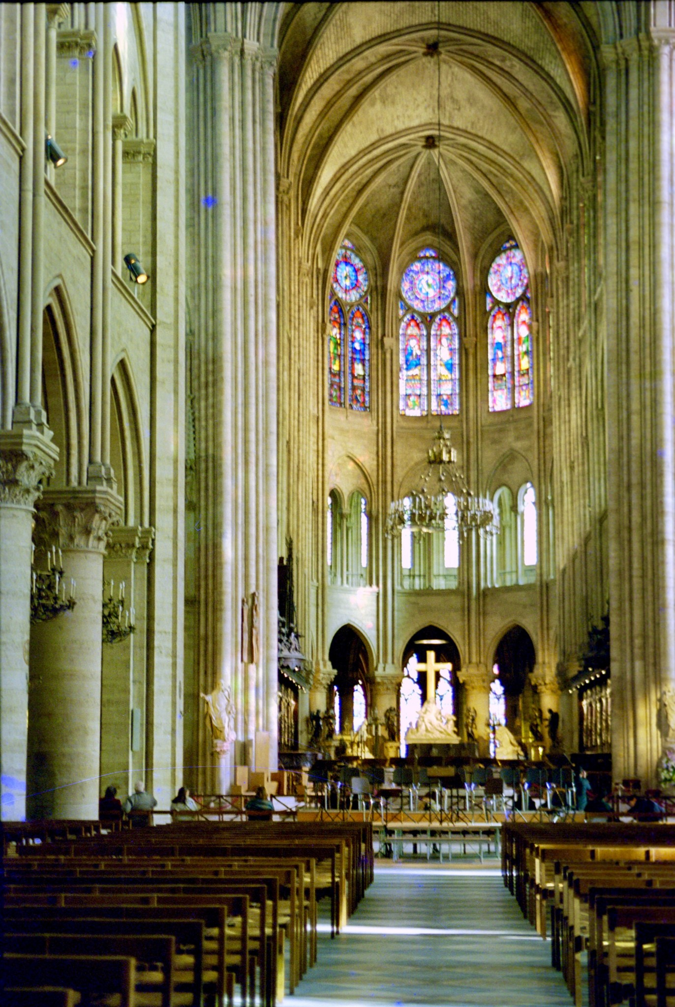 Notre Dame Windows
