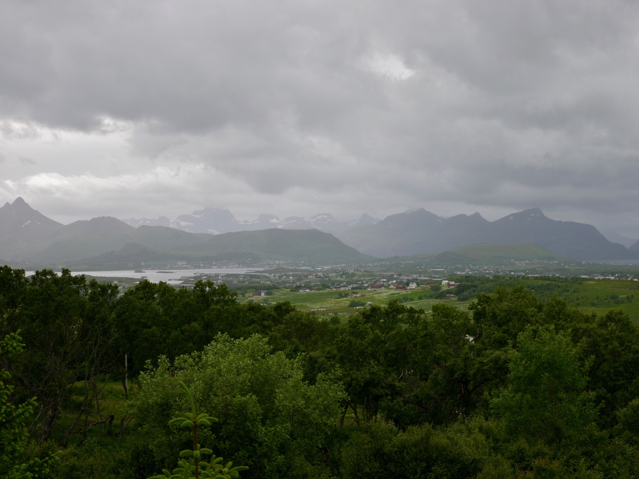 Views - 3